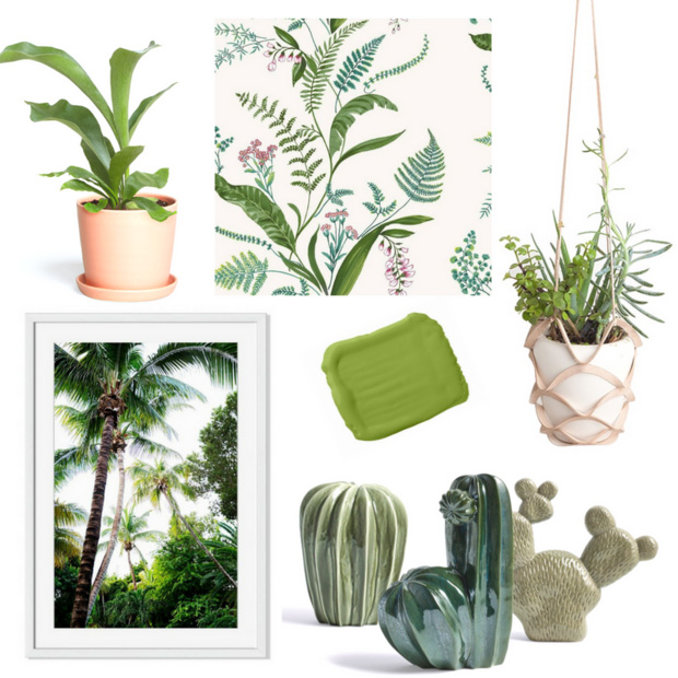 fern decor - greenery